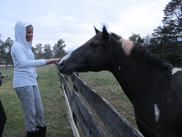 While staying at the Paget-Brown's home, the DCMS students got to feed their horses.