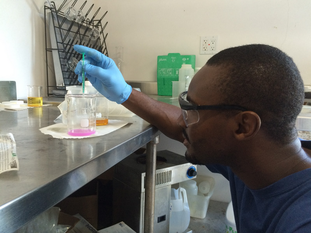 Sam performs a titration on a sample of oil prior to reacting a batch of biodiesel.